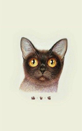 【【动物壁纸】可爱猫咪手绘手机壁纸】-【乐檬系列