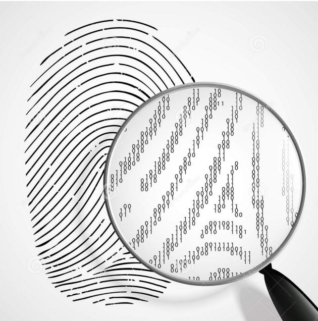 指纹是指人的手指末端正面皮肤上凸凹不平产生的纹线.图片