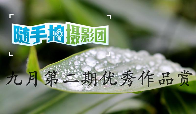 IMG_0366_mix01_副本.jpg