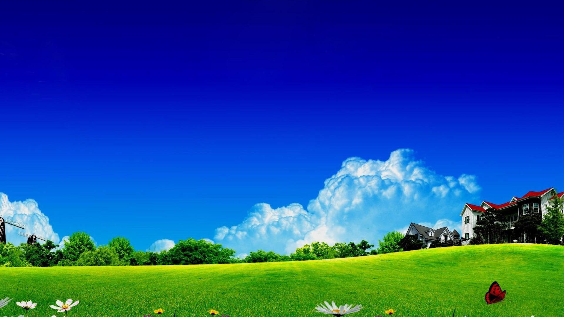 桌面吧_【一组高清绿色植物保护视力墙纸桌面壁纸】-【软件及服务 ...